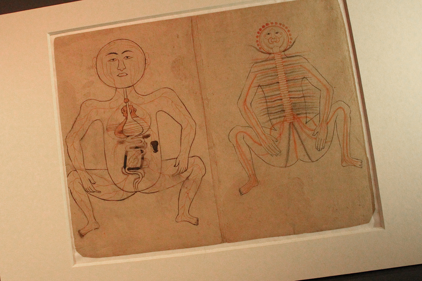 14th Century Anatomical Illustration, Museum of Islamic Art | Doha, Qatar