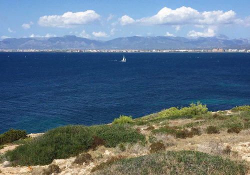 Cap Rocat: The View From Villa 91 | Palma De Majorca, Spain