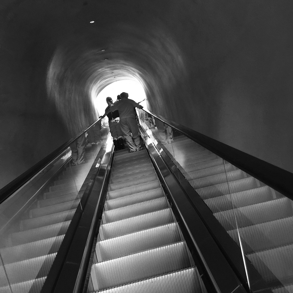 Escalator ascent to the main Broad gallery | Los Angeles, California