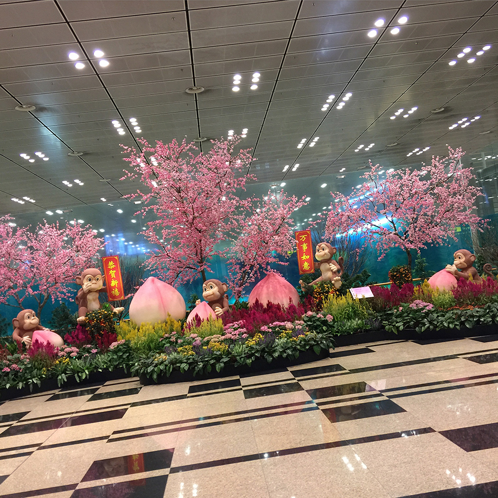 Impressive displays from SIN Airport | Singapore