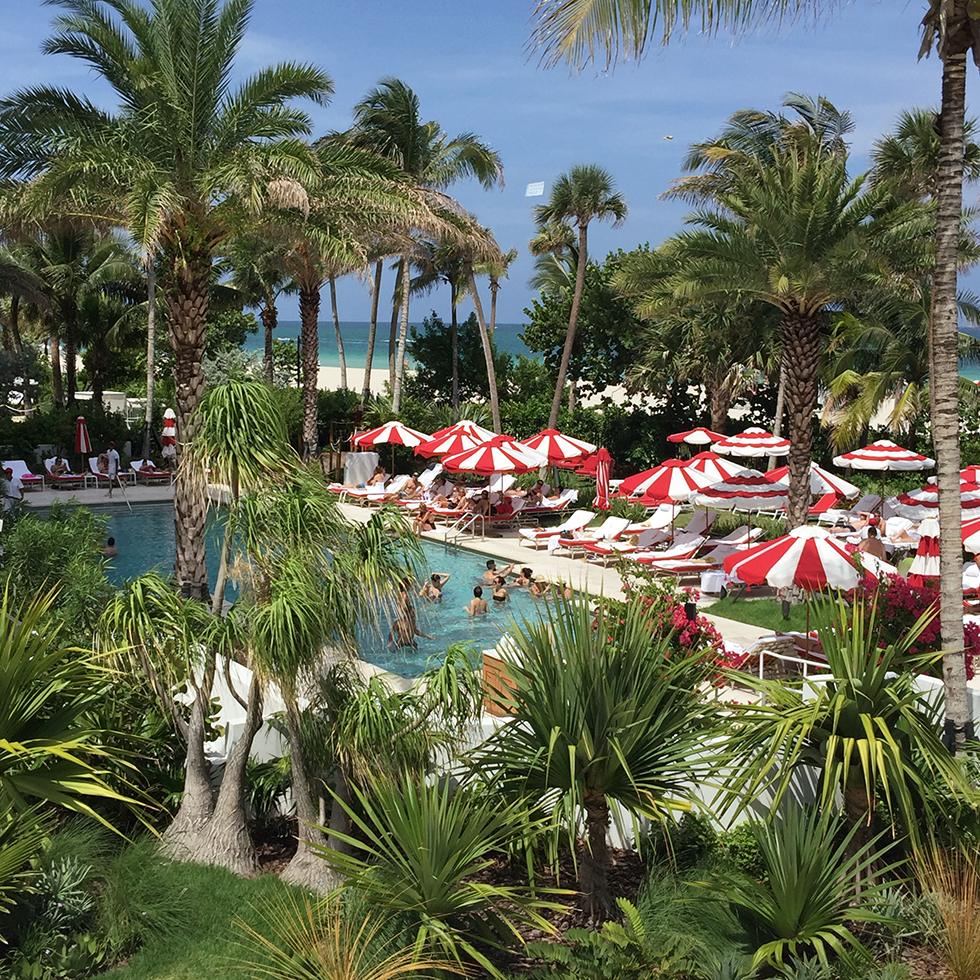 Lush pool scene of Faena Hotel | Miami, Florida